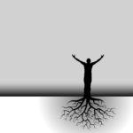 Tree Man Roots